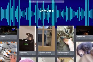 GIF-хостинг Imgur станет ещё и видеоплощадкой»